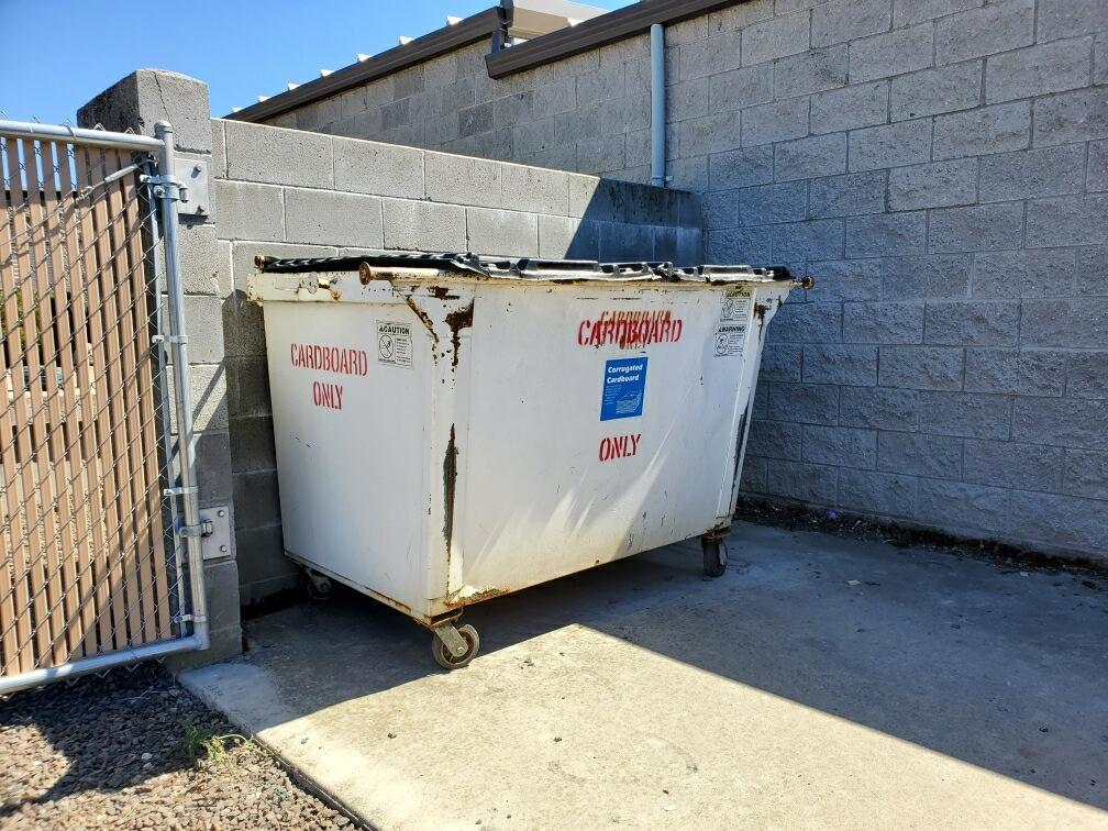 dumpster cleaning